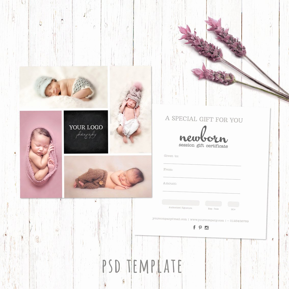 Photography Gift Certificate Template Free Inspirational Gift Certificate Template Newborn Session Photography T