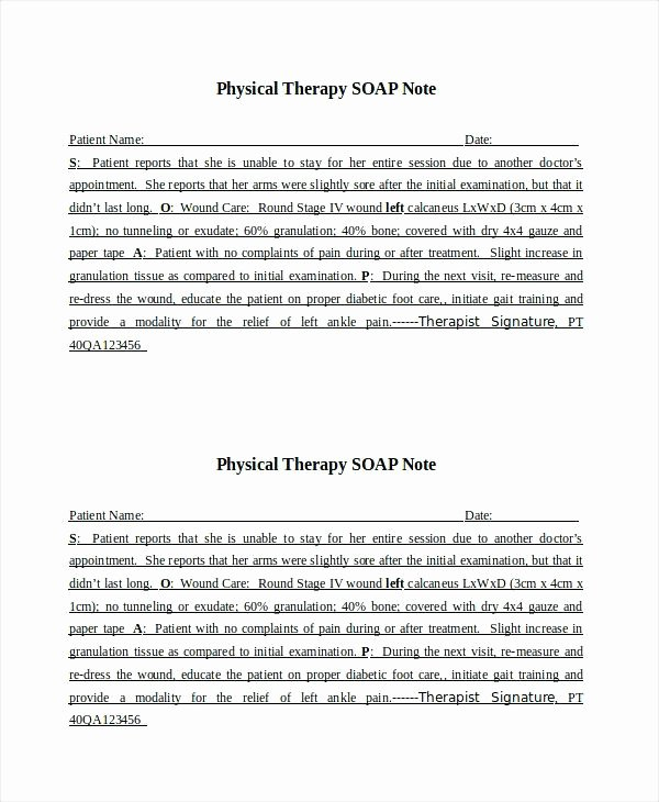 Physical therapy Daily Note Template Lovely Examples soap Notes Note Example Snapshot Divine Pt Web