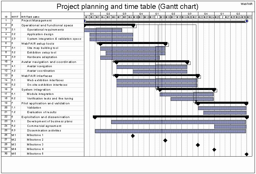 Pilot Project Plan Template Best Of System Integration Project Plan Template Choice Image