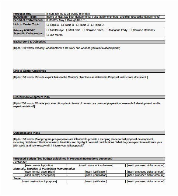Pilot Project Plan Template Unique 8 Sample Program Proposal Templates to Download