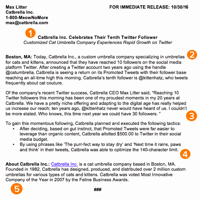 Press Release Email Template Best Of How to Write A Press Release [free Press Release Template