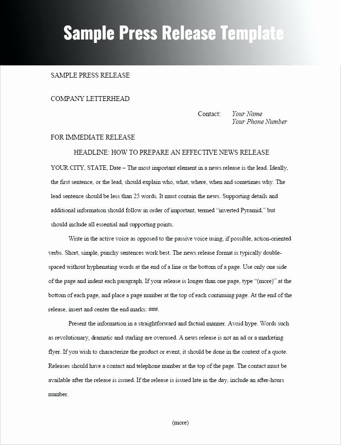 Press Release Template Doc Unique Press Release format Template Word Political Sample