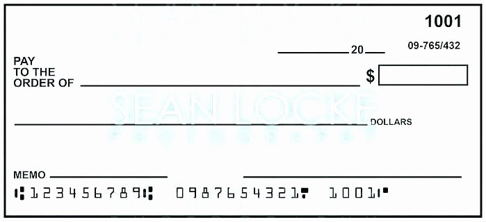 Print Your Own Checks Template Awesome Blank Cheque Template Editable Presentation Checks Free