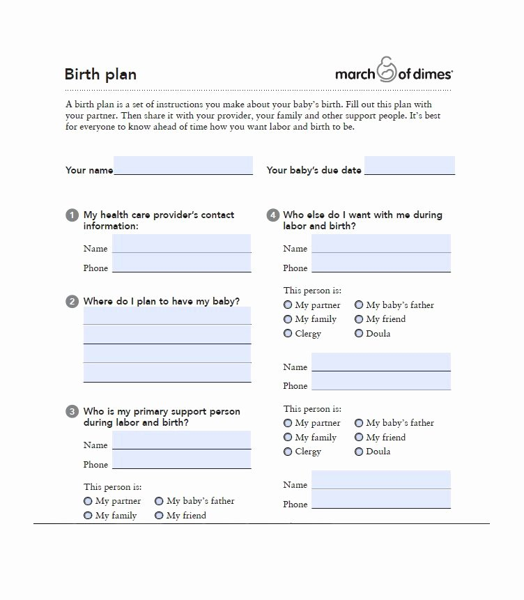Printable Birthing Plan Template Unique 47 Printable Birth Plan Templates [birth Plan Checklist