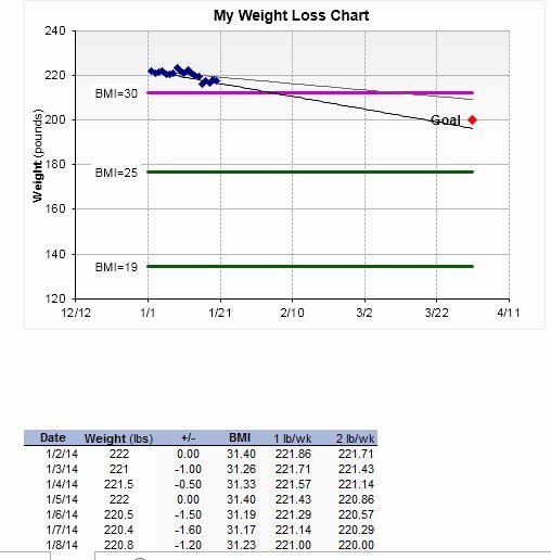Printable Weight Loss Chart Template Inspirational 13 Free Sample Weight Loss Log Templates Printable Samples