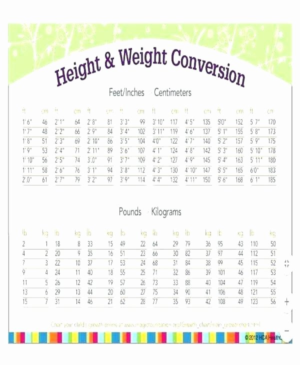 Printable Weight Loss Chart Template Lovely Template Free Printable Birthday Chart Template Weight