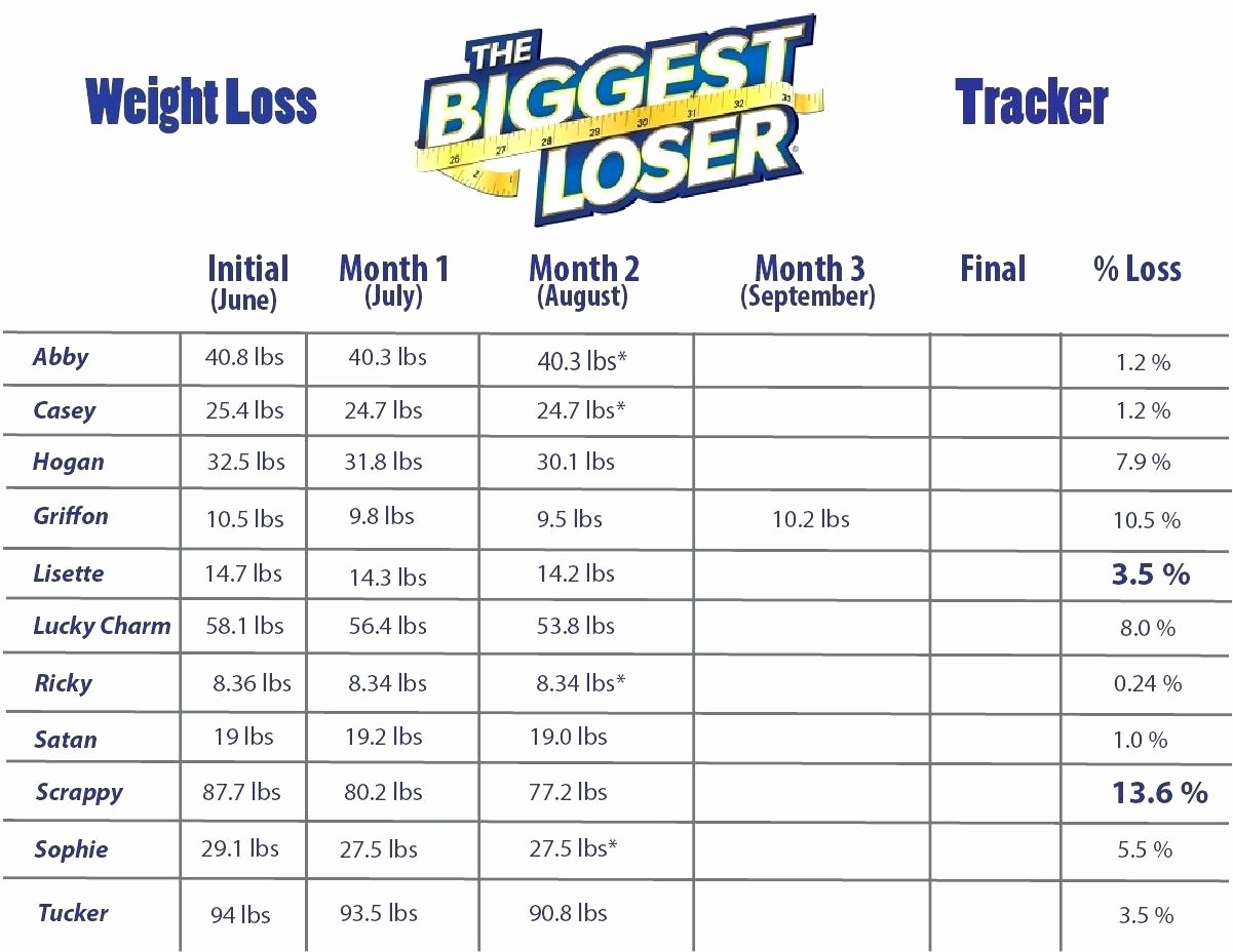 Printable Weight Loss Chart Template Luxury Biggest Loser Weight Loss Chart Template