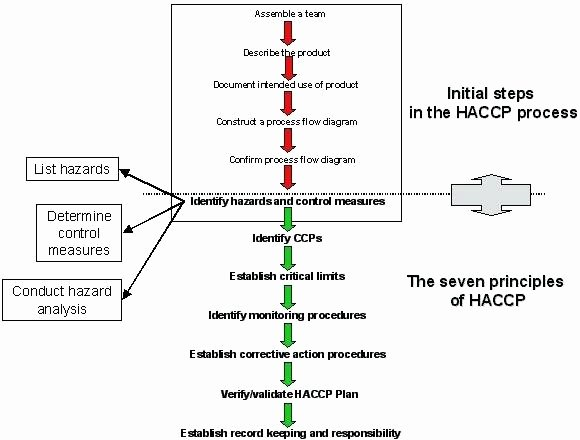 Process Hazard Analysis Template Elegant Haccp Flowchart Pub Pinterest – Baked