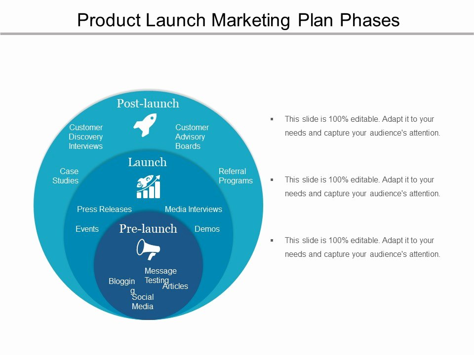 Product Launch Marketing Plan Template Luxury Product Launch Marketing Plan Phases Ppt Icon