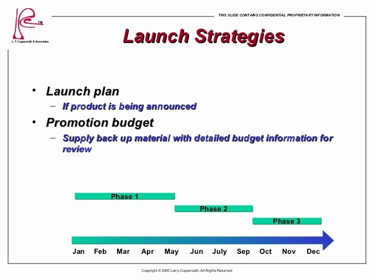 Product Launch Marketing Plan Template New Marketing Plan Report