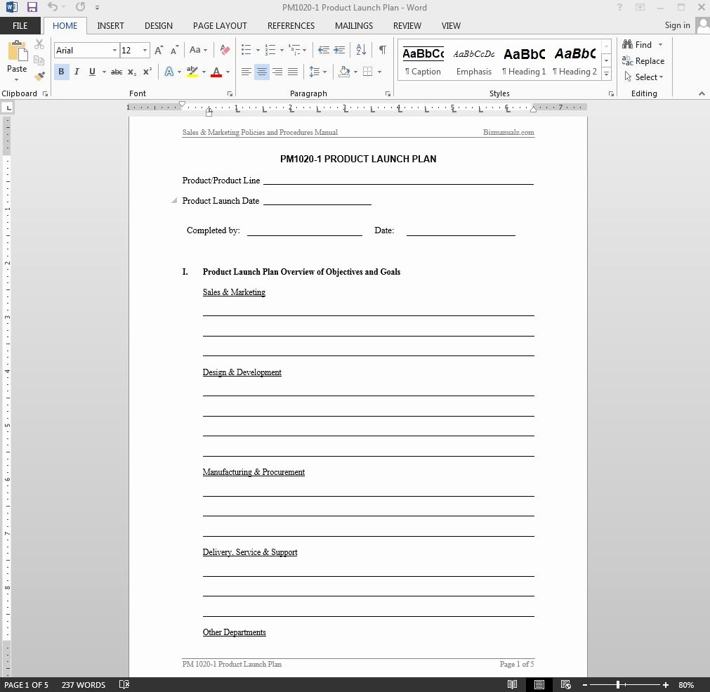 Product Launch Plan Template Best Of Product Launch Plan Template