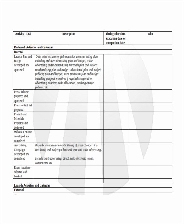 Product Launch Plan Template Unique Product Launch Plan Template 8 Free Word Pdf Document