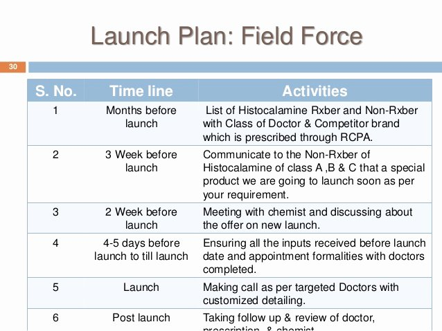 Product Launch Plan Template Unique Product Launch Plan Template