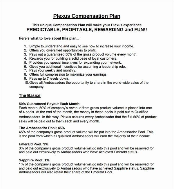 Professional Compensation Plan Template Beautiful 9 Pensation Plan Templates
