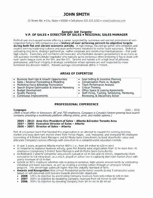 Professional Compensation Plan Template Beautiful Professional Employee Pensation Plan Template Senior