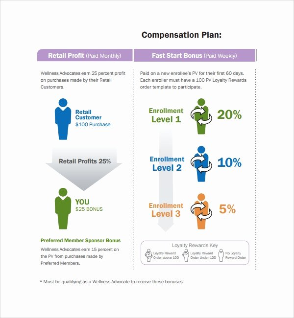 Professional Compensation Plan Template Best Of Sample Pensation Plan Template 8 Free Documents In
