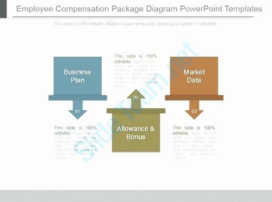 Professional Compensation Plan Template Elegant Employee Pensation Plan Example Sample Pay Plans Sales