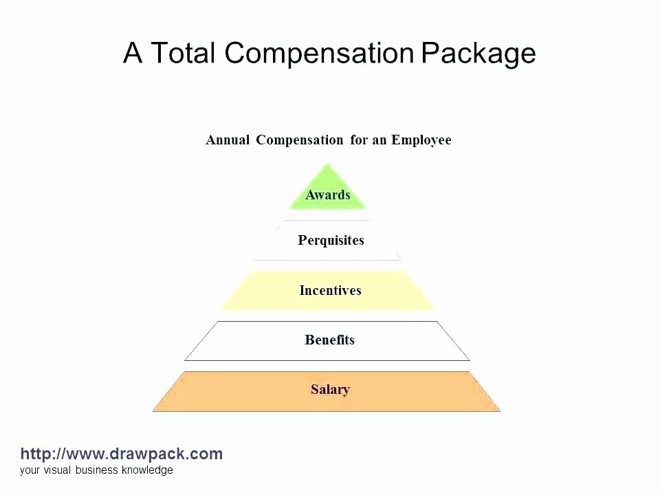 Professional Compensation Plan Template Luxury Employee Benefits Package Template Pensation Plan Pdf