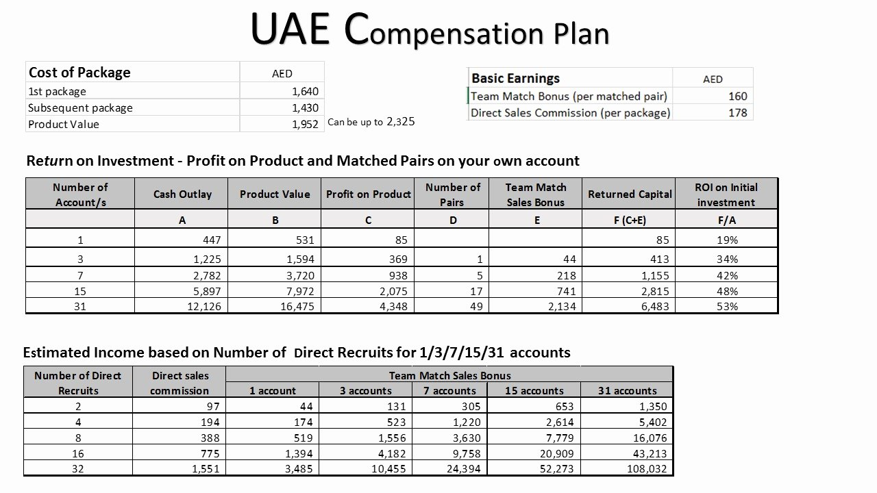 Professional Compensation Plan Template Luxury Pensation Plan Template Design Templates