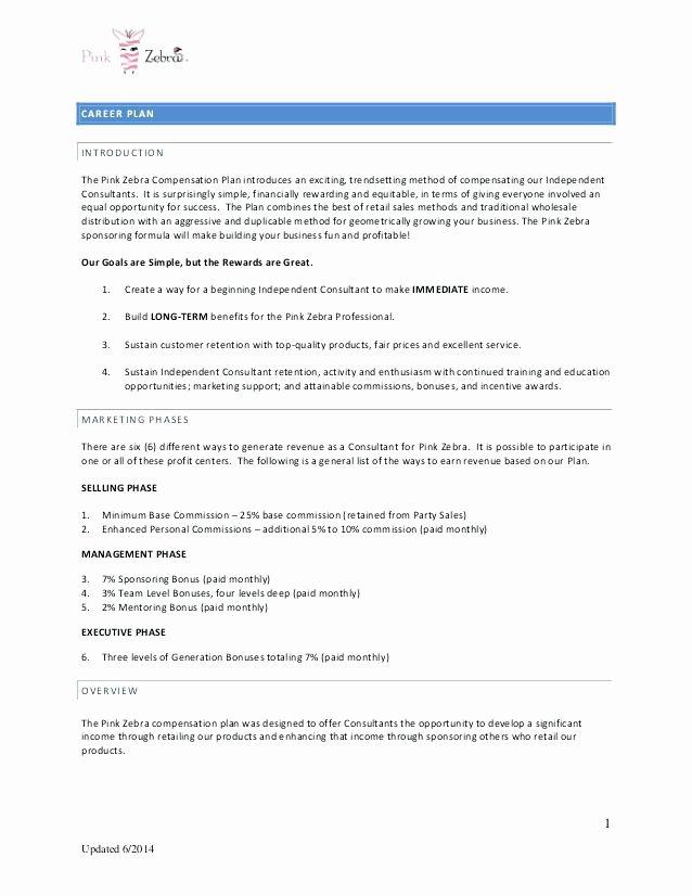 Professional Compensation Plan Template Unique Best Professional Pensation Plan Template Incentive