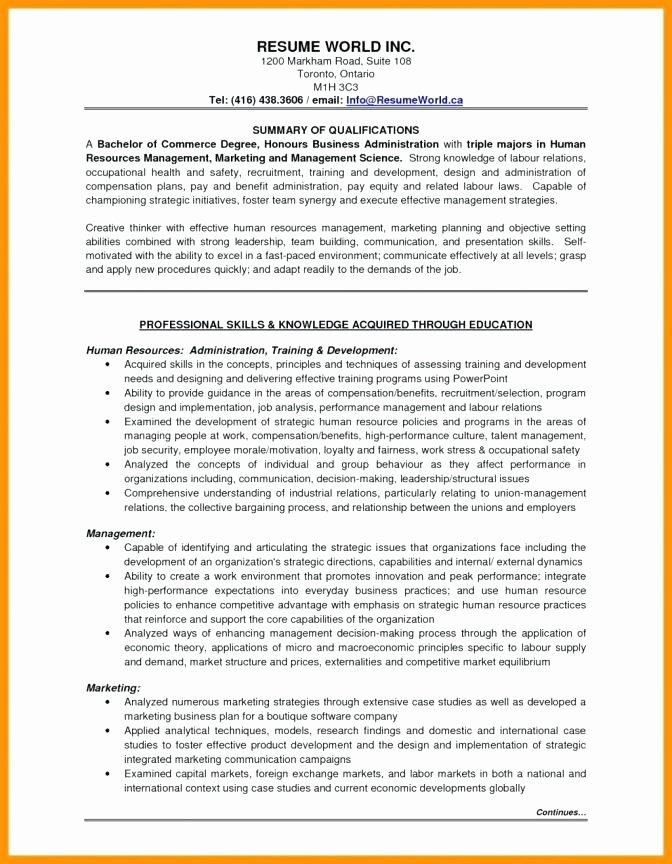 Professional Compensation Plan Template Unique Professional Employee Pensation Plan Template Senior