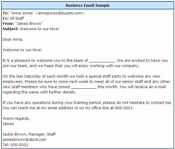 Professional E Mail Template Elegant Professional Email format Slim Image