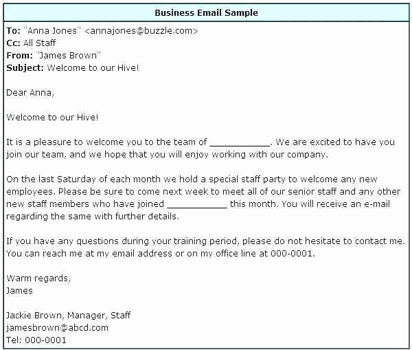 Professional Email Template Free Inspirational 8 9 Writing Professional Emails Examples