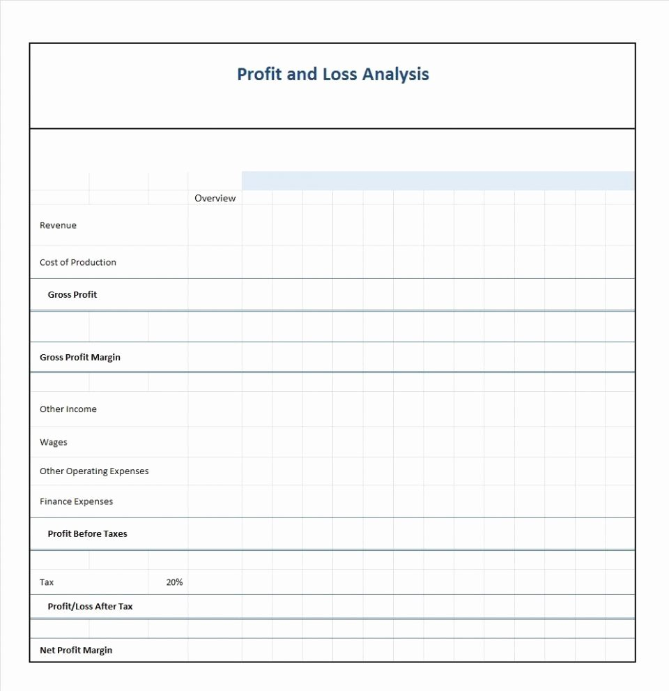 Profit and Loss Sheet Template Luxury P and L form Maggi Locustdesign Co Pl Sheet Template