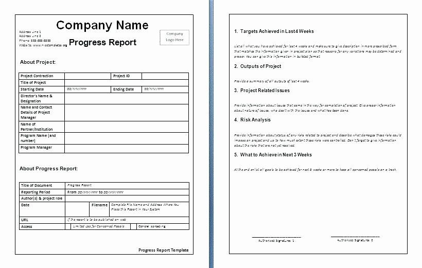 Progress Report Template Excel Inspirational School Progress Report Template Pdf Weekly Update Loan
