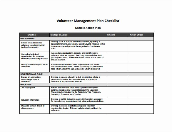 Project Action Plan Template Fresh Management Action Plan Template 9 Download Documents In