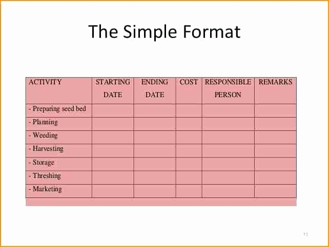 Project Implementation Plan Template Excel Fresh Simple Implementation Plan Template 9 Reasons You Should