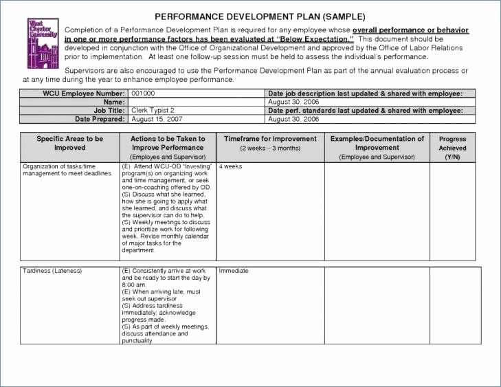 Project Implementation Plan Template Excel New Project Implementation Plan Template Excel Readleaf Document