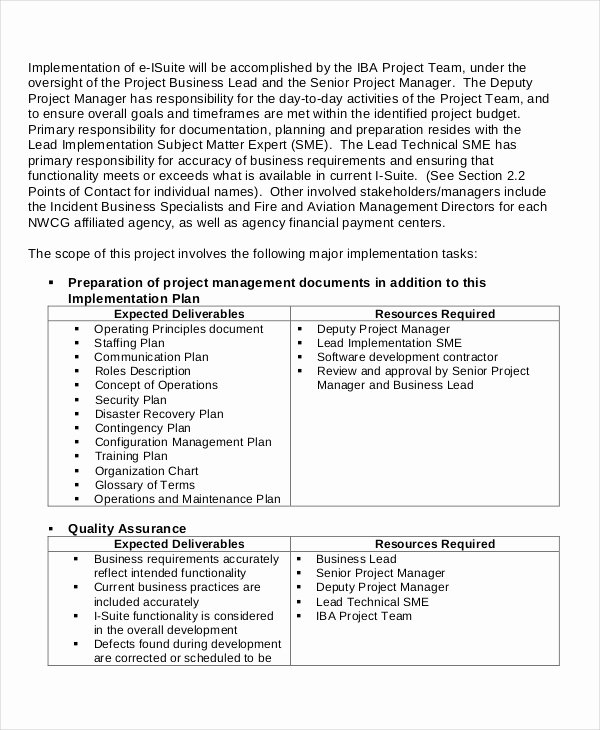 Project Implementation Plan Template Inspirational Project Implementation Template 6 Free Word Pdf