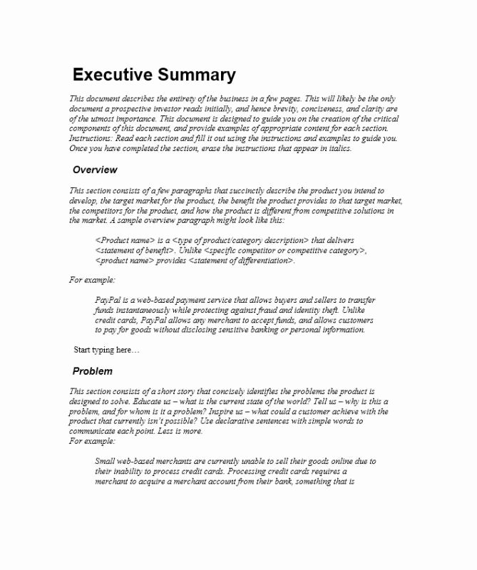 Project Management Executive Summary Template Beautiful Executive Summary Sample