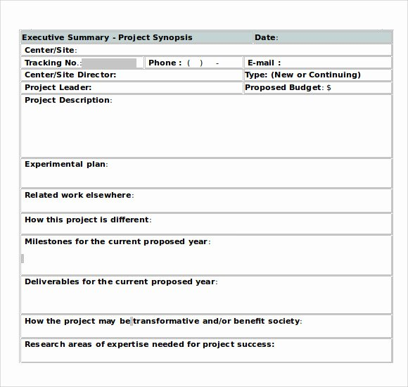 Project Management Executive Summary Template Beautiful Sample Executive Summary Template 8 Documents In Pdf