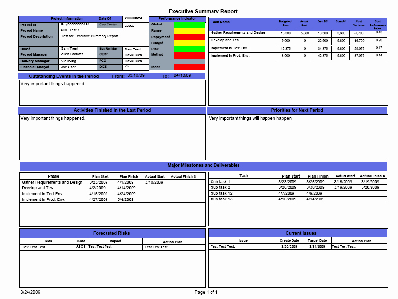 Project Management Executive Summary Template Best Of 7 Best Of Project Summary Report Template E