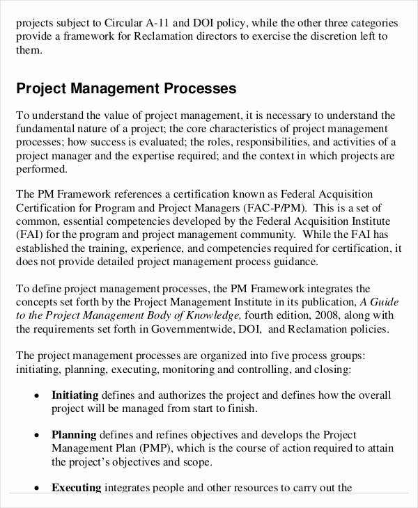 Project Management Executive Summary Template Best Of Project Management Template 10 Free Word Pdf Documents