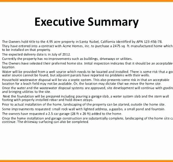 Project Management Executive Summary Template Elegant Executive Summary Template for Project Management Overview