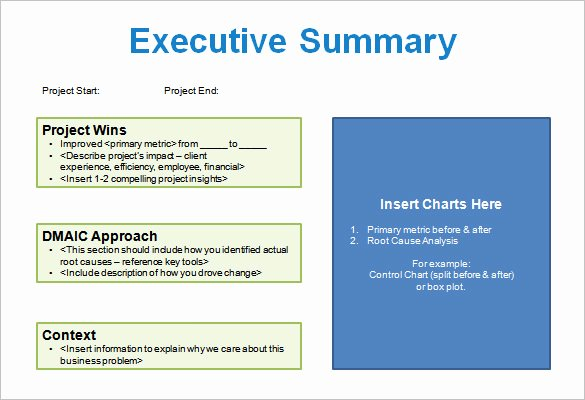 Project Management Executive Summary Template Fresh 5 Project Storyboard Templates Doc Pdf Ppt