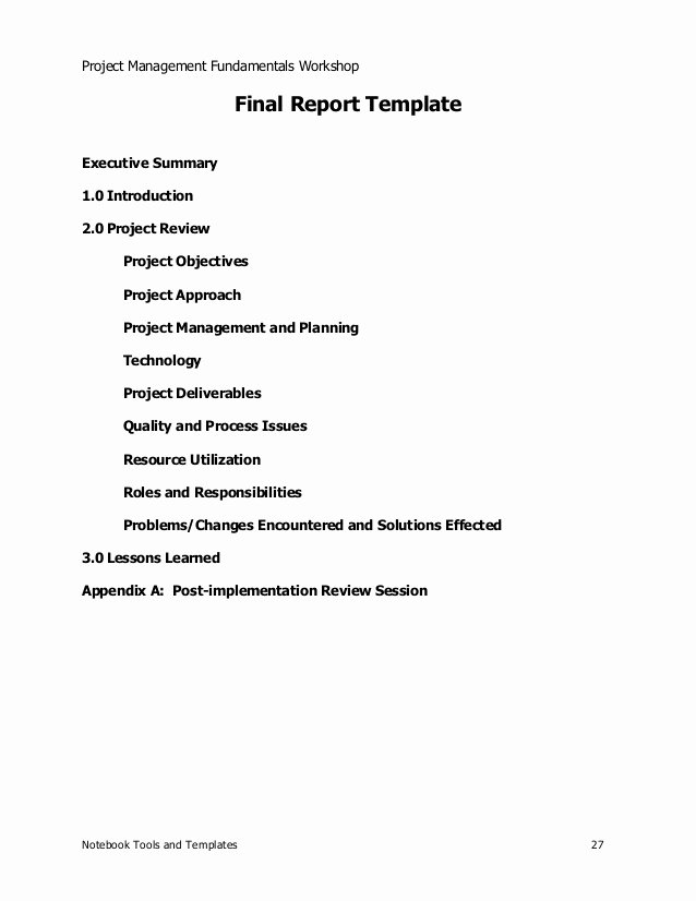 Project Management Executive Summary Template Lovely Project Management Sample