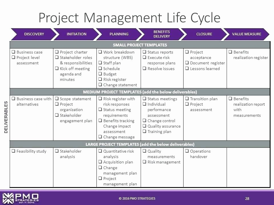 Project Management Lessons Learned Template Unique Lesson Learned Template Doc Lessons Excel Sample Document
