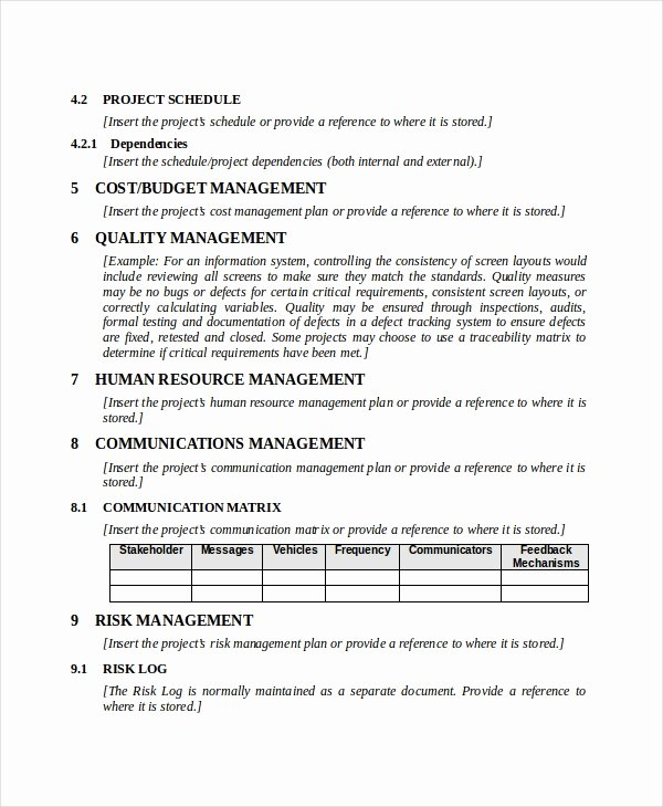 Project Management Plan Template Word Best Of Project Plan Template 10 Free Word Pdf Document