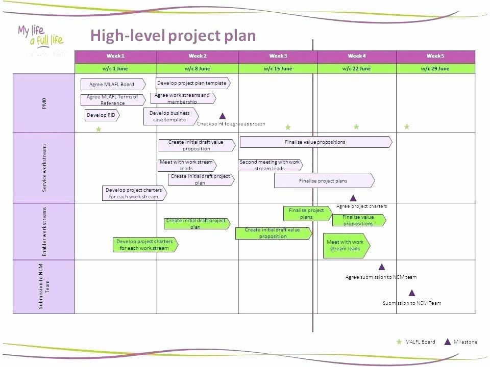 Project Management Plan Template Word Luxury High Level Project Plan Template
