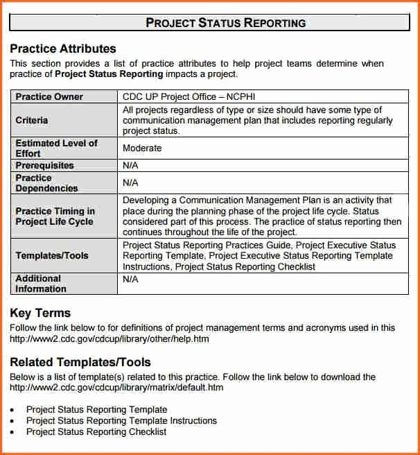 Project Management Progress Report Template Elegant Project Status Report Sample Project Status