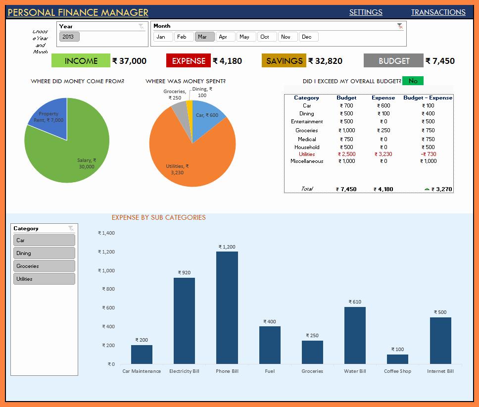 Project Management Progress Report Template Luxury 6 Monthly Status Report Template Project Management