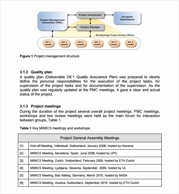 Project Management Report Template Best Of 9 Management Report Templates Free Samples Examples