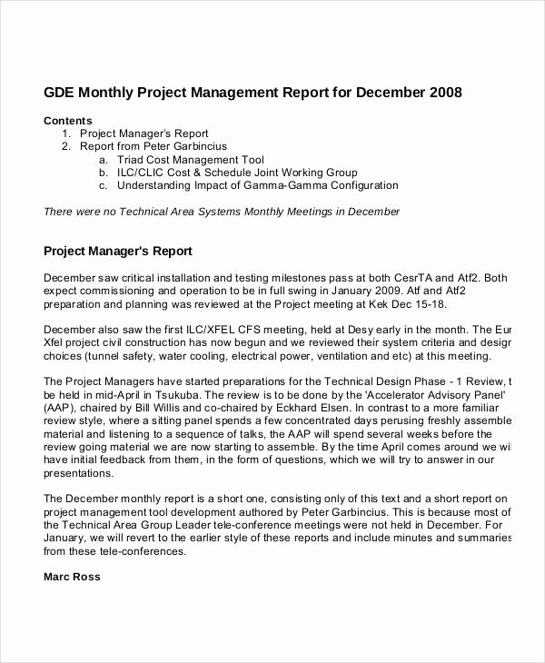 Project Management Report Template Unique 11 Project Management Report Templates In Ms Word Excel