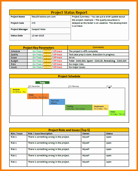 Project Management Status Report Template Best Of 3 Project Management Status Report Template