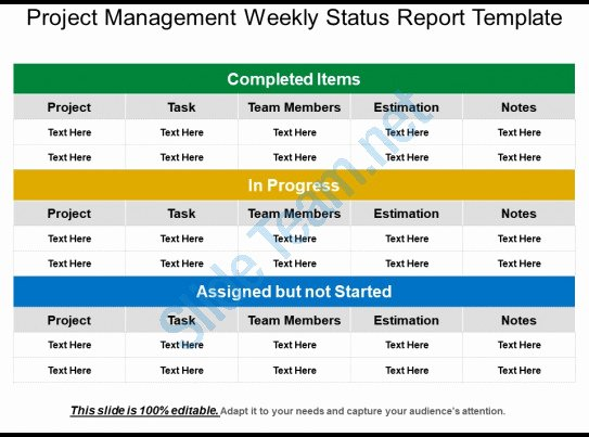 Project Management Status Report Template Luxury Project Management Weekly Status Report Template