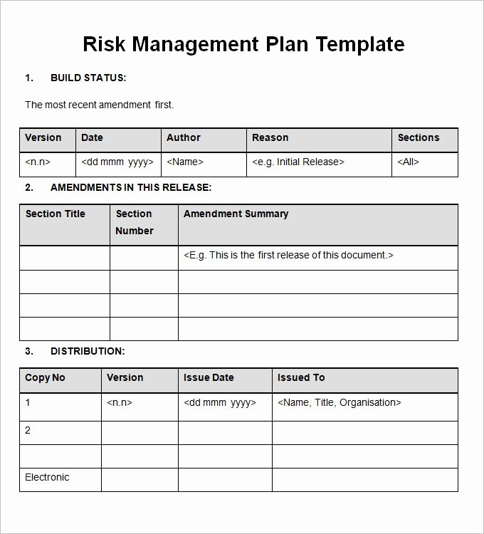 Project Management Template Word Beautiful 13 Risk Management Plan Templates